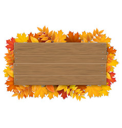 wooden sign with autumn maple tree leaves vector image