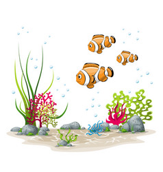 an underwater landscape with fish and plants vector image