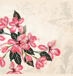 background or with hibiscus flowers in retro style vector image