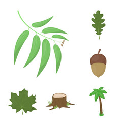 Forest and nature cartoon icons in set collection vector