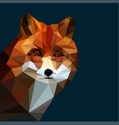 fox head low poly vector image