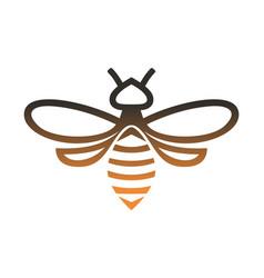 gold bee logo icon concept vector image