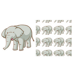 seamless background design with gray elephant vector image