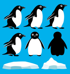 Set of penguins vector