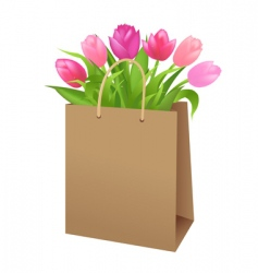 bag with tulips vector image