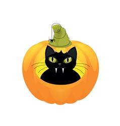Black cat halloween pumpkin vector