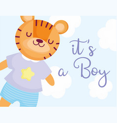 Boy or girl gender reveal its a boy cute tiger vector