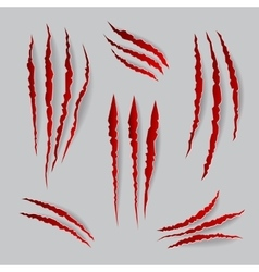 cat claws marks set vector image