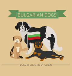 dogs by country of origin bulgarian dog breeds vector image