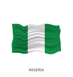 Flag nigeria vector