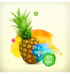 Pineapple watercolor vector image