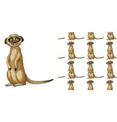 Seamless background design with meerkat vector