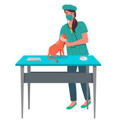 Veterinarian woman treats a red cat listening vector