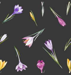 Watercolor crocus floral pattern vector