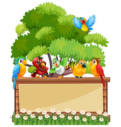 Border template wtih wild parrots vector