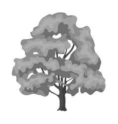 Canadian maple canada single icon in monochrome vector