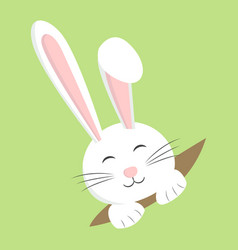 easter rabbit white bunny design cartoon vector image