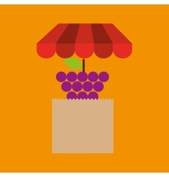 Grape bag filled fruit offer design vector