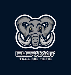 modern elephant head mascot logo vector image