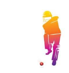 abstract cricket player vector image