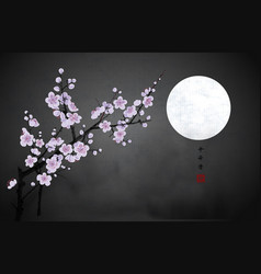blossoming branch oriental cherry and moon vector image
