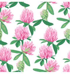 floral seamless pattern with red clover vector image