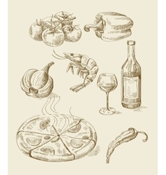 hand drawn food sketch vector image