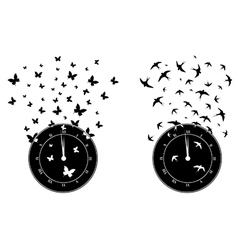 Time and freedom vector