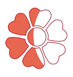 japanese sakura flower beauty nature shadow vector image
