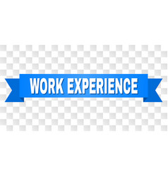 Blue stripe with work experience text vector
