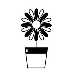 Contour sunflower with petals inside to flowerpot vector