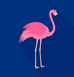 flamingo cartoon flat icon brazil vector image