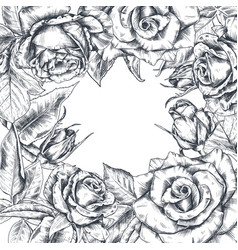 hand drawn rose flowers square frame vector image
