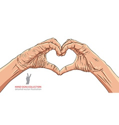 Hands in heart form detailed vector image