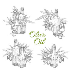 Icons of olives and olive oil bottles vector