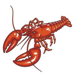 lobster 001 vector image