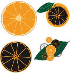 Orange fruit icons for summer vector