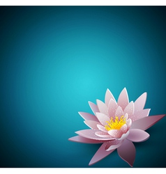 background with a water lily vector image vector image