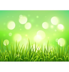 Green grass on bokeh light effect background vector image vector image