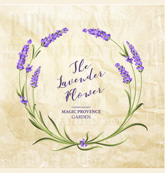 the lavender elegant card vector image