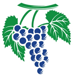 grapes symbol vector image vector image