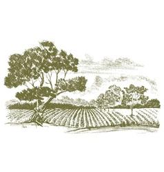 FarmFieldDrawing vector image