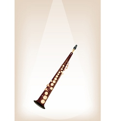 A Musical Soprano Saxophone on Stage Background vector image
