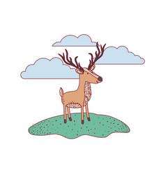 deer cartoon in outdoor scene with clouds on vector image