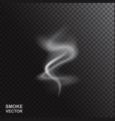 realistic smoke or steam vector image
