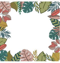 tropic frame design vector image