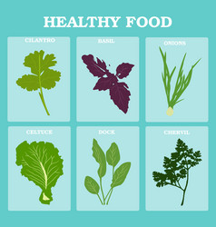 set vegetables and herbs flat healthy vegetarian vector image