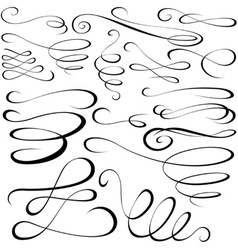 Calligraph Elements vector image