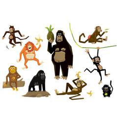 funny monkey set monkeys various breeds in vector image
