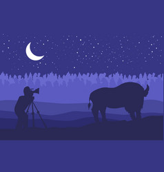 landscape with wild bizon on field vector image